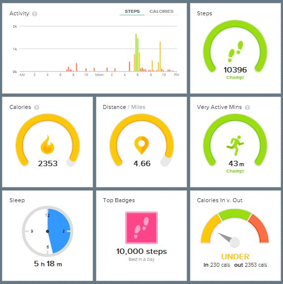 FitBit Data provided by Katie Frampton