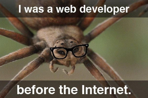 Hipster Web Developer