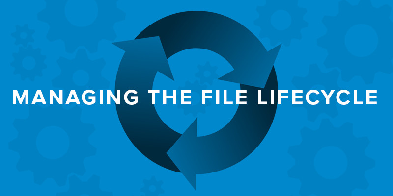 managing the information file lifecycle
