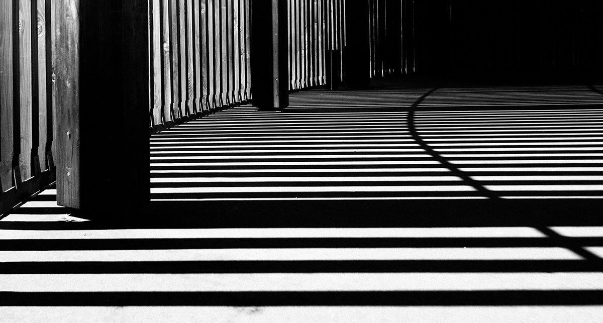 shadow it webinar