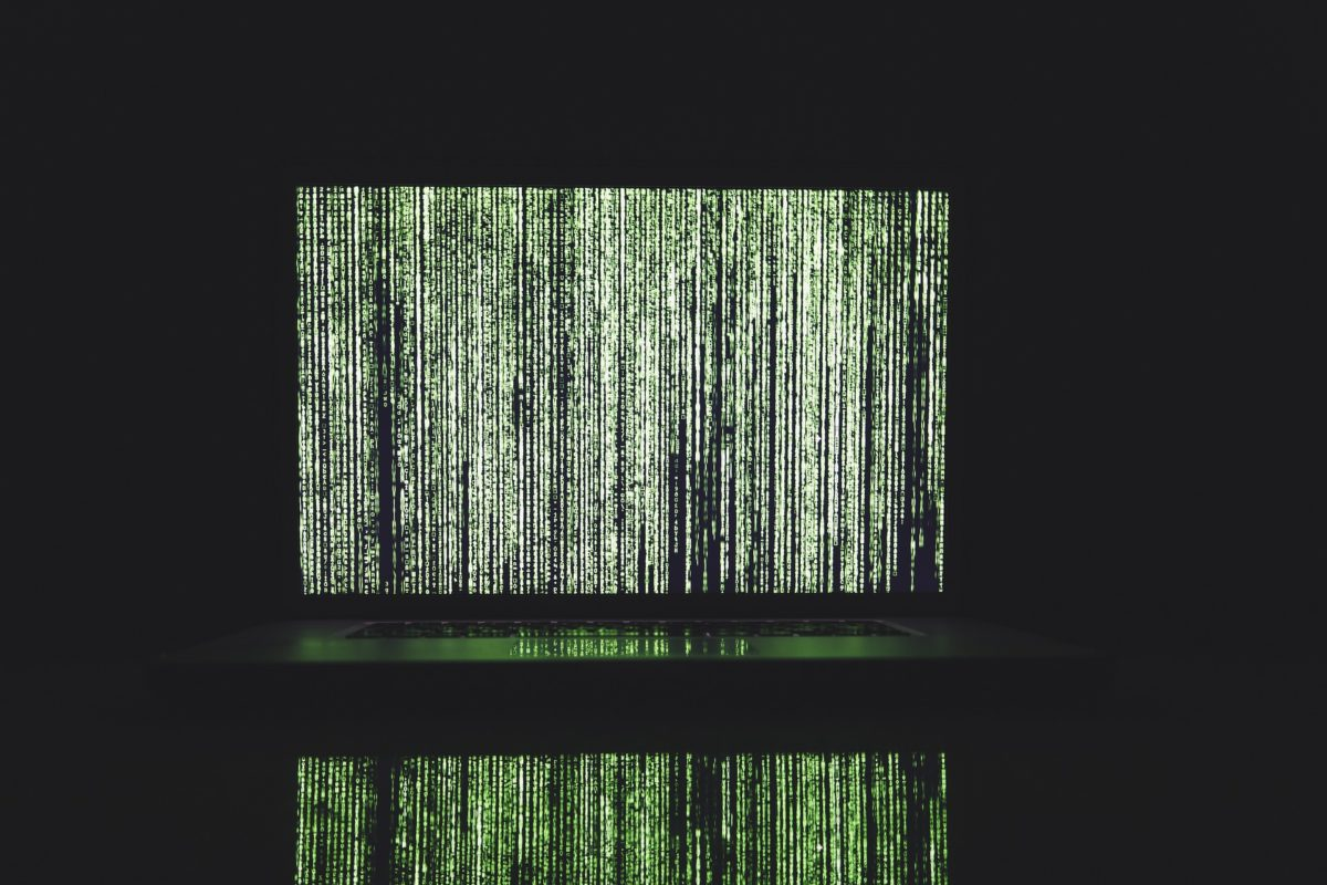 A Taste of Armageddon: The Rise of Denial of Service Attacks